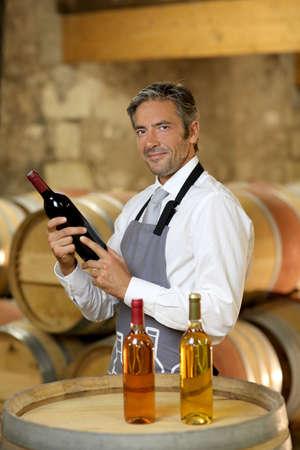 wine stocks: Wine waiter standing in wine cellar Stock Photo