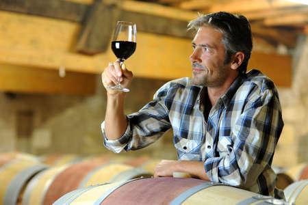 bodegas: Winemaker de cata de vinos en bodega rojo