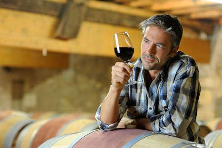 wine testing: Winemaker tasting red wine in winery