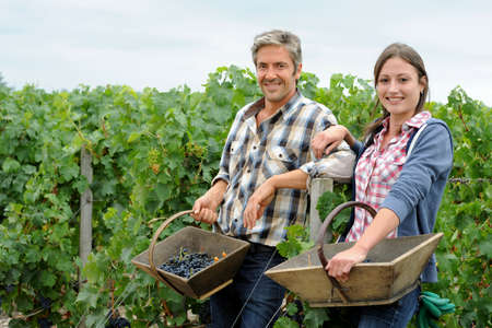 Smiling couple of harvesters standing in vineyard photo
