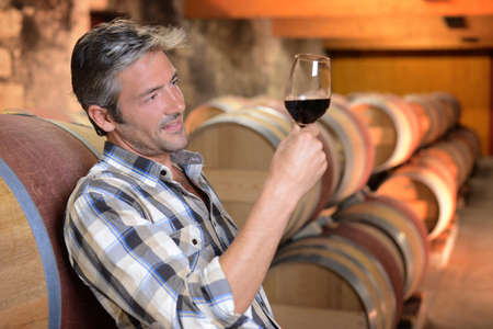 Winemaker checking red wine quality in wine cellar photo