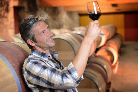 winemaker: Winemaker checking red wine quality in wine cellar Stock Photo