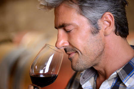 winemaker: Closeup on winemaker smelling red wine in glass