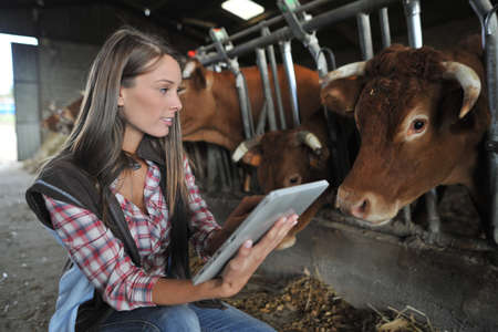 Woman in barn using electronic tablet photo
