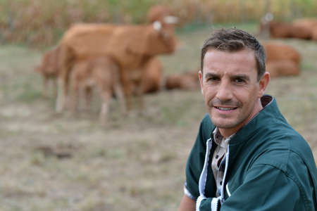herdsman: Herdsman standing in front of cattle in farm
