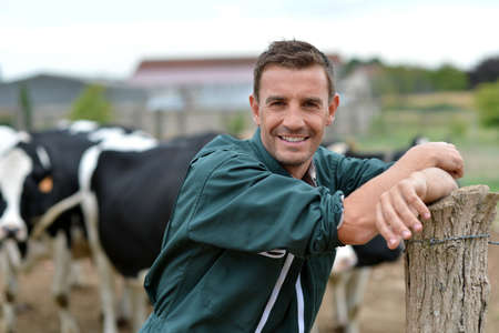 farmer's: Herdsman standing in front of cattle in farm