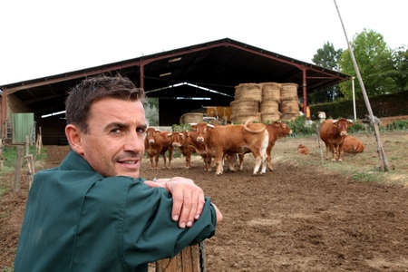 Herdsman standing in front of cattle in farm photo