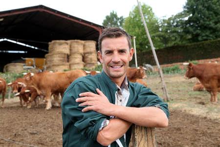 herdsman: Herdsman standing in front of cattle in farm