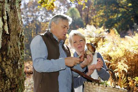 Senior couple in forest holding ceps mushrooms photo
