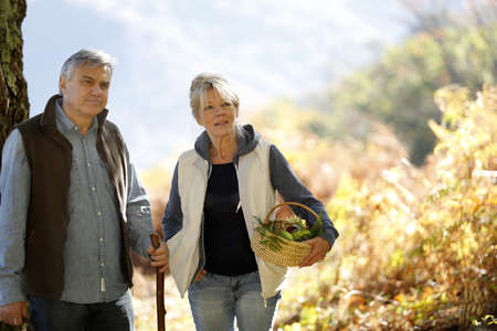 Senior couple walking in forest in autumn photo