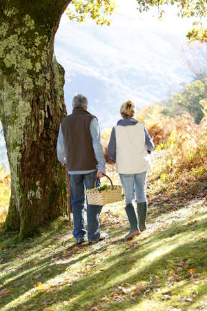 hiking stick: Back view of senior couple walking in forest