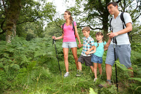 forests: Family on a trekking day in countryside