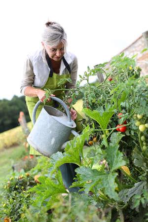 Картинки по запросу женщина в огороде