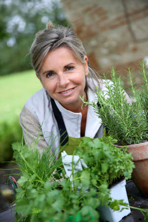 Senior woman preparing aromatic herbs in pot photo