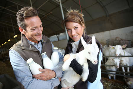 smiling goat: Cheerful couple of breeders in barn with goats