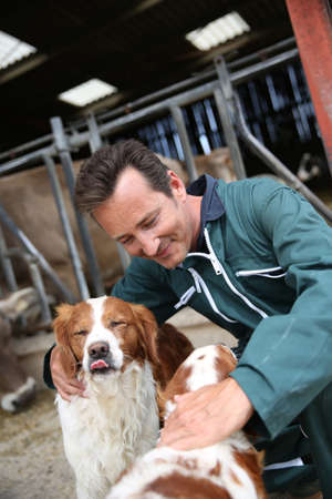 knelt: Breeder petting dogs outside the barn Stock Photo
