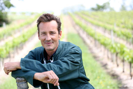 Smiling vinegrower standing in vineyard Stock Photo