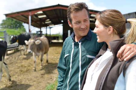 house wife: Couple of farmers standing by cattle  Stock Photo