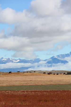 an overview: Overview of South Patagonia farmland