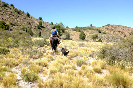 Gaucho horseriding in North Patagonia Stock Photo
