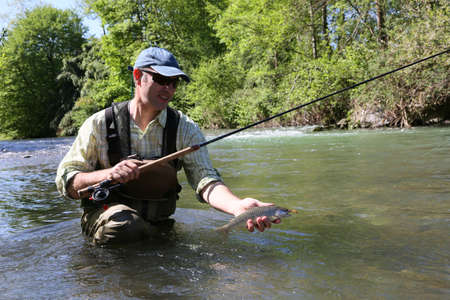 brown trout: Fisherman in river catching brown trout