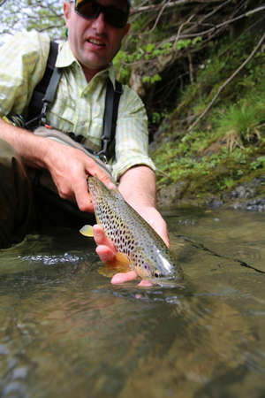 recently: Fisherman releasing recently caught brown trout Stock Photo