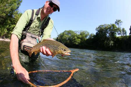 trucha: Fly-pescador captura de la trucha marrón en el río Foto de archivo