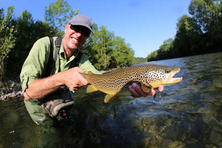 fly fishing: Closeup of fly-fisherman holding brown truit in river