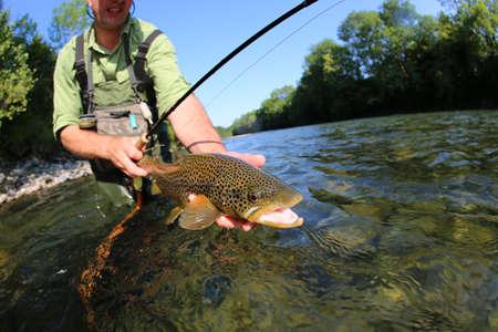 hombre pescando: Primer de la mosca pescador sostiene Truit marrón en el río Foto de archivo
