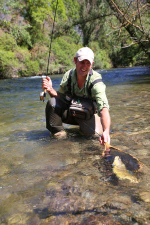 brown trout: Fly-fisherman taking brown trout out of water with landing net Stock Photo