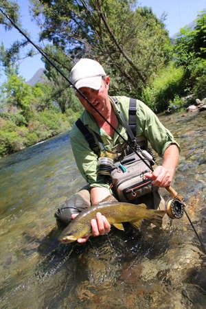 brown trout: Fly fisherman holding brown trout in stream water