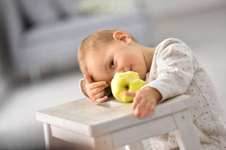 15 months old: Cute 15-month-old baby girl eating an apple Stock Photo