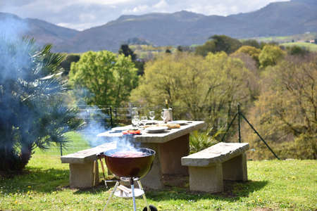 table set: Barbecue grill and lunch table set in private garden