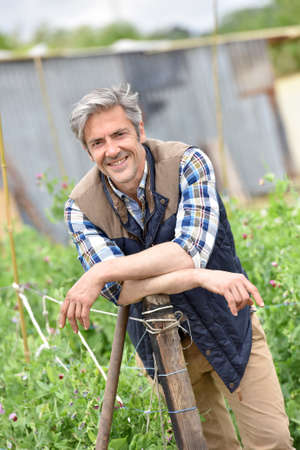 man at work: Cheerful farmer standing in vegetable garden
