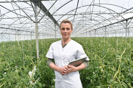 agronomist: Portrait of agronomist standing in greenhouse