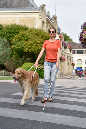 Blind woman crossing the street with help of guide dog Imagens