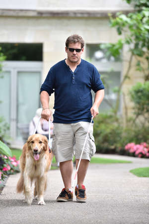 Blind man walking in park with dog assistance Stock Photo