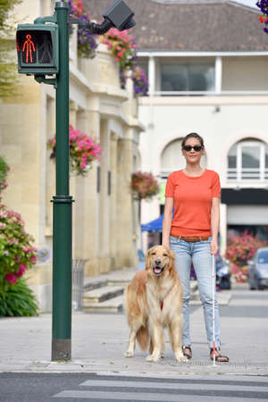 blind person: Blind woman crossing the street with help of guide dog Stock Photo