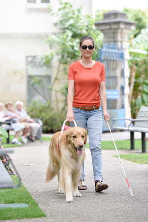 Blind woman walking in park with dog assitance 版權商用圖片