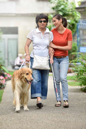carer: Senior blind woman walking with help of dog and carer