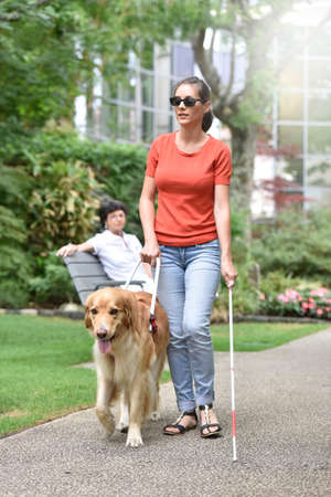 Blind woman walking in park with dog assitance Stock Photo