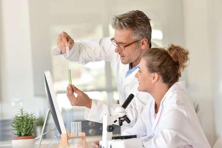 Studenten en docenten in de biologie opleiding Stockfoto