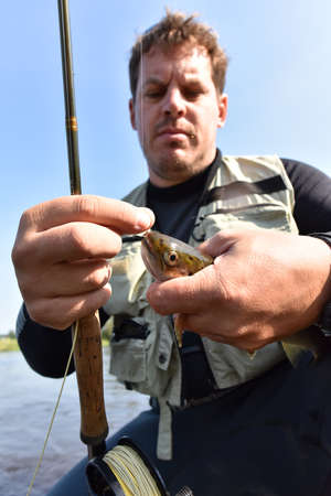caught: Closeup of brown trout being caught in river Stock Photo