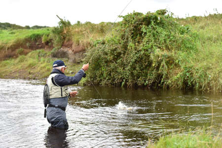 catching: Fly-fisherman catching trout in irish river