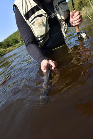 catching: Fly-fisherman catching sea trout in river Stock Photo
