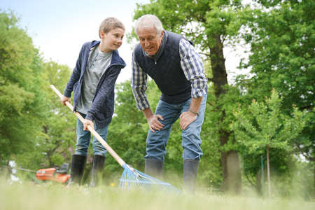grandkid: Grandfather with grandkid cleaning garden with rake