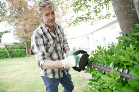 Mature man in garden trimming hedges Stock Photo