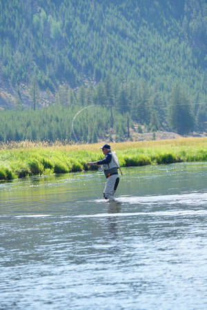Fly-fisherman fishing in Madison river, Yellowstone Park