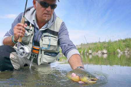 Fly fisherman in river of Montana catching brown trout Archivio Fotografico