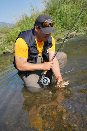 brown trout: Fly fisherman catching brown trout in river